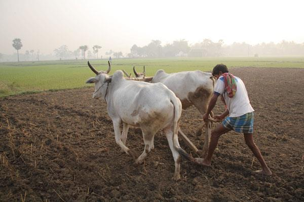 pm kisan nidhi yojana five lakh farmers get two two thousand rupees