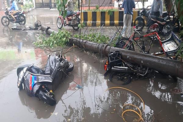 electric poles and trees fell due to heavy rains in the city