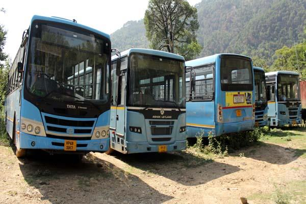 reduced route in rural areas blue buses lost life here