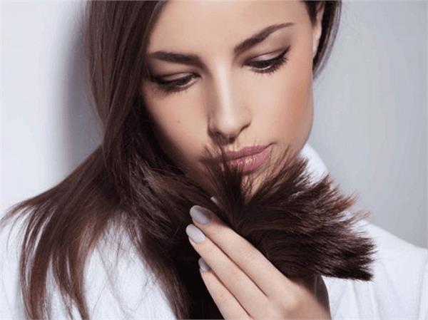 Hair Care: पतले बालों से हैं परेशान तो लगाएं नहीं डाइट में खाएं 4 चीजें
