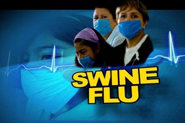 swine flu gave knock in madhya pradesh