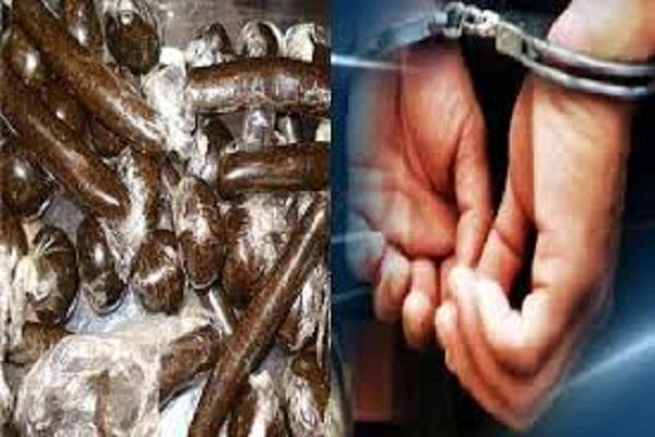 charas recovered from devotees going on shrikhand yatra