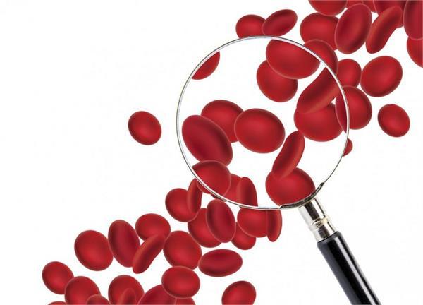 दवाइयों से नहीं, डाइट में ये 6 चीजें खाकर बढ़ाएं Red Blood सेल्स