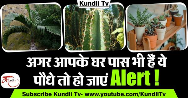 according to vastu beware of these kind of plants