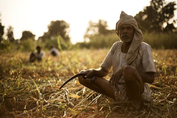kisan credit card will now be made within two weeks