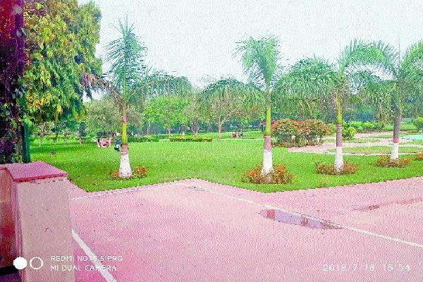 5 lakh plants will take place city environment will be clean