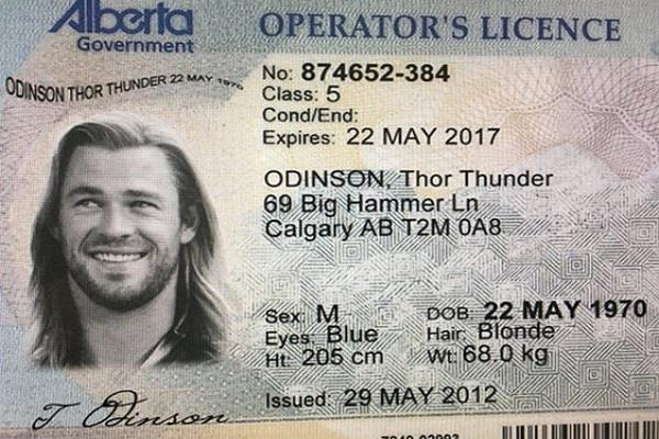viral news viral photo thor canada weed fake id twitter chris hemsworth