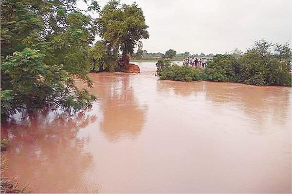 ghaggar river flood