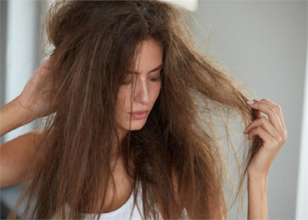 रूखे-टूटते बालों से परेशान रहती हैं तो आजमा कर देखें शहनाज हुसैन हेयर टिप्स