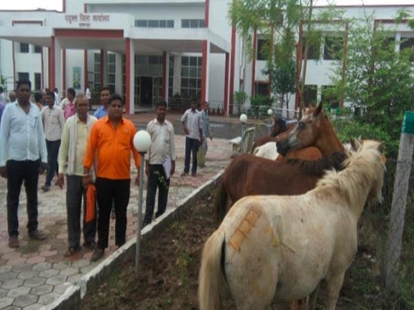 farmer protest in collectorate burhanpur