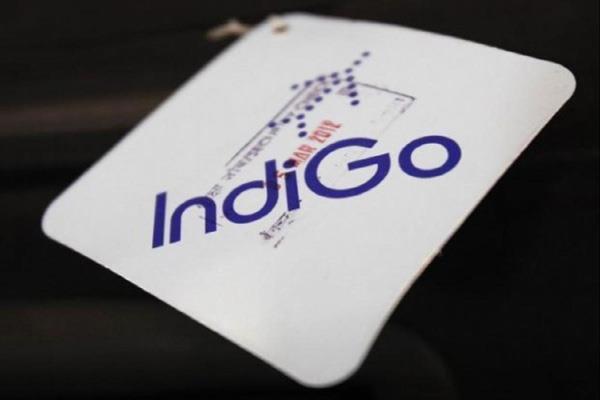 indigo s profit increased 43 times profit of rs 1203 crore in june quarter