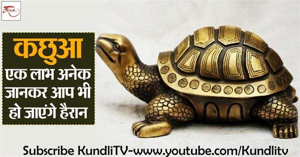 turtle has many benefits related to vastu for good luck and bad luck