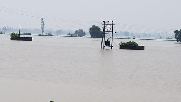 action plan released after the flood