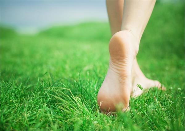 डायबिटीज मरीज के लिए फायदेमंद है घास पर चलना, मिलते हैं और भी फायदे