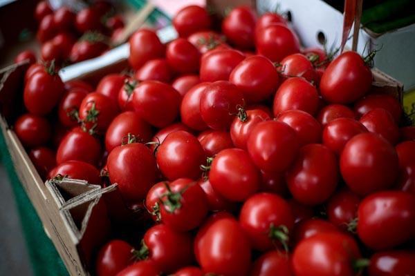 tomato cost 300 rupees per kg in pakistan
