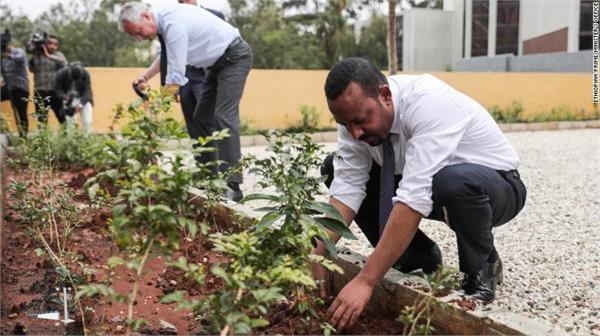 ethiopia plants more than 353 million plants in 12 hours