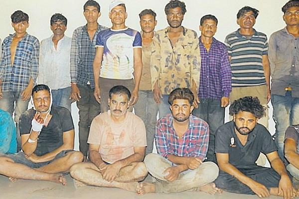 wood smugglers held forest workers hostage and beaten