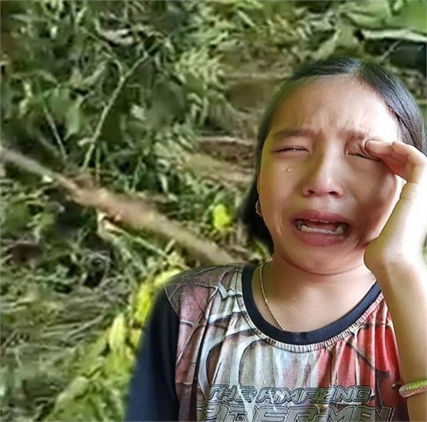 पेड़ कटता देख रोने लगी थी वैलेंटिना, CM ने बनाया 'ग्रीन मणिपुर मिशन' की ब्रांड एम्बेसडर