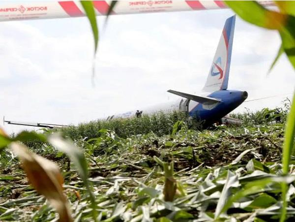 russian planes lands in corn field pilot saves 226 passengers life