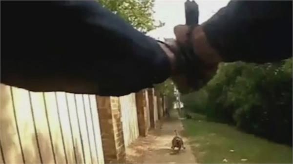 police rookie texas officer shoots at dog kills woman