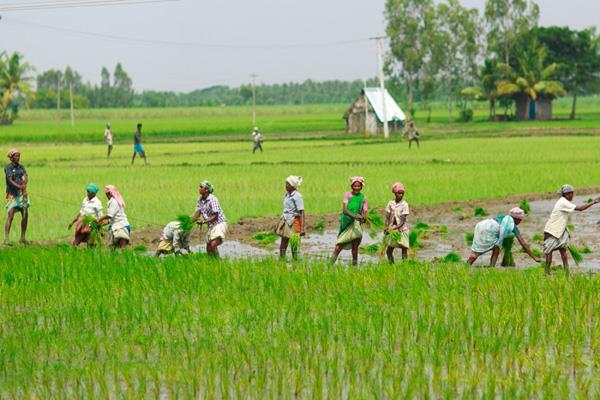 pm kisan samman yojana third installment today