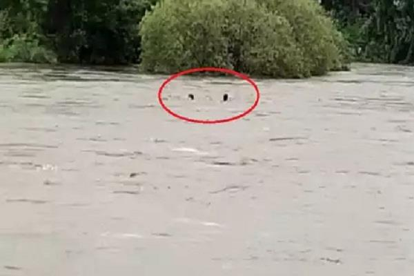 one of two young men drowned to save a woman flowing in the river