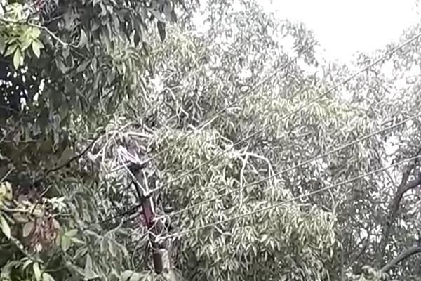 problem becomes electric pole