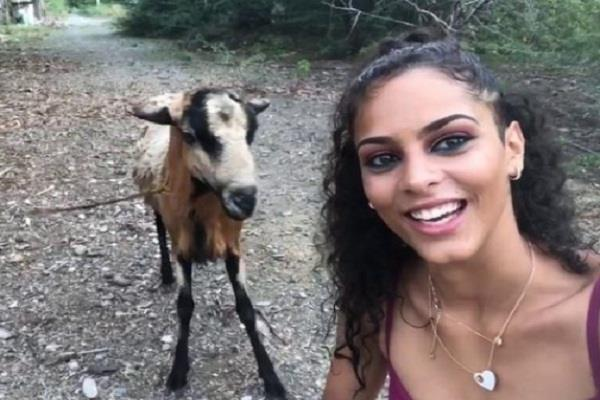 selfie uk goat