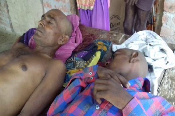 fever havoc in sitapur