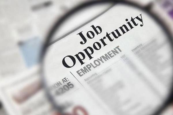 golden opportunity to do government job in delhi