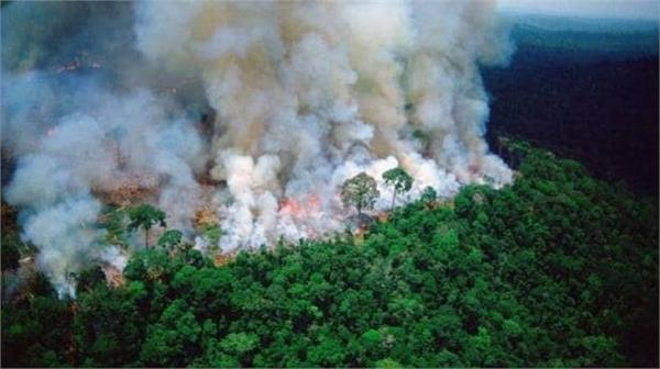 blaze destroys brazil s rainforest  prayforamazonia goes viral