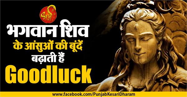 connection of lord shiva and rudraksha