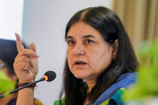 maneka gandhi statement
