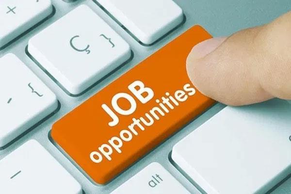 kendriya recruitment 2019 for 55 posts including junior stonographer