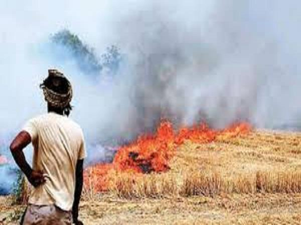 farmers will be deprived of the right to take land
