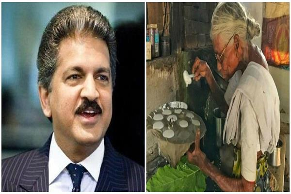 anand mahindra is looking for this idli wali dadi
