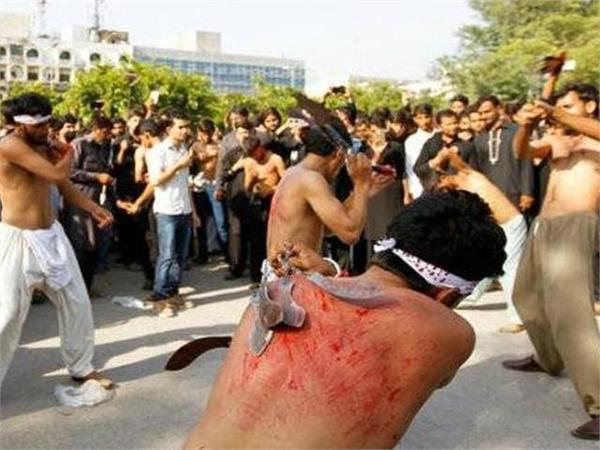 know why people of shia community shed their blood on muharram