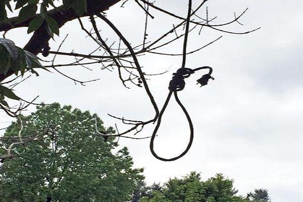 dead body of 2 people found hanging from tree