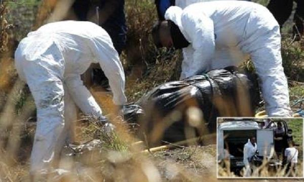29 bodies found in plastic bags in mexico mass grave