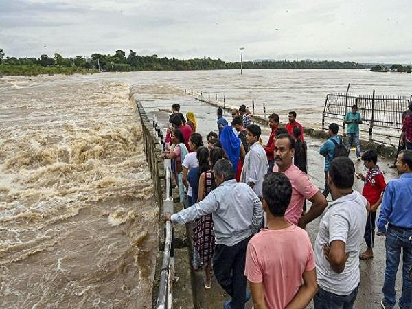 202 people died due to heavy rains