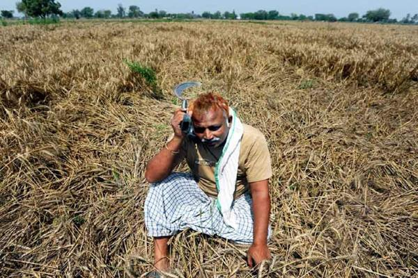 more than half of small farmers and marginal farmers