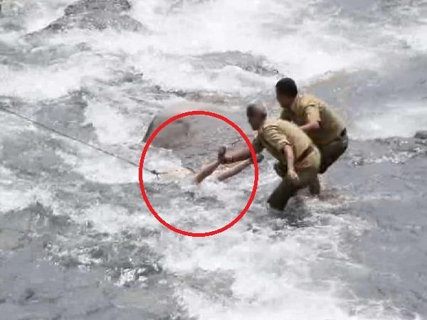 dead body of youth found in sarwari drain of kullu