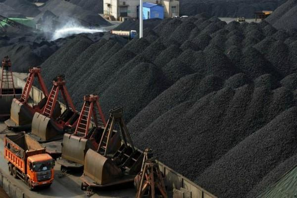 coal india will provide jobs to 7 000 people in the current financial year