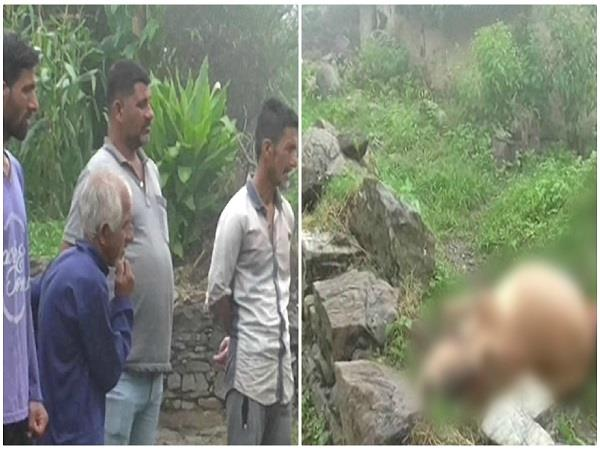 leopard panic in bharali of paonta