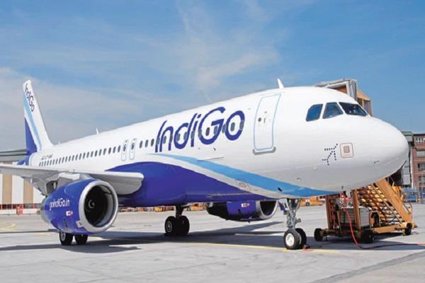 indigo forgot to carry the luggage of 130 passengers
