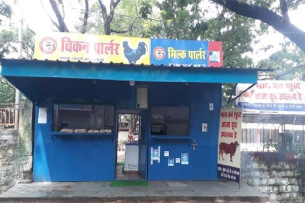 milk and kadaknath chicken not sold together cm kamal nath decides