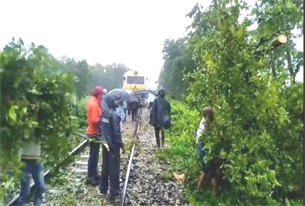 kushinagar trees fell on railway track traffic disrupted