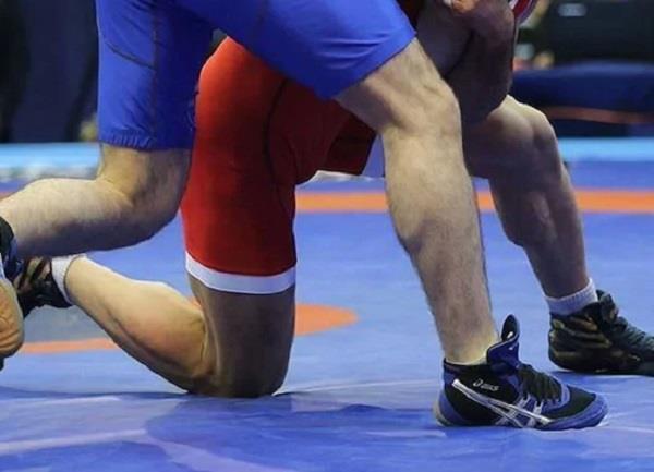 haryana s 60 member squad announced for national wrestling championship