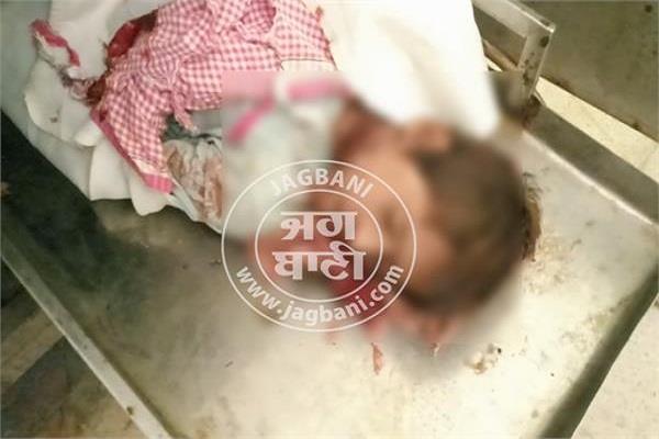 10 year child murder