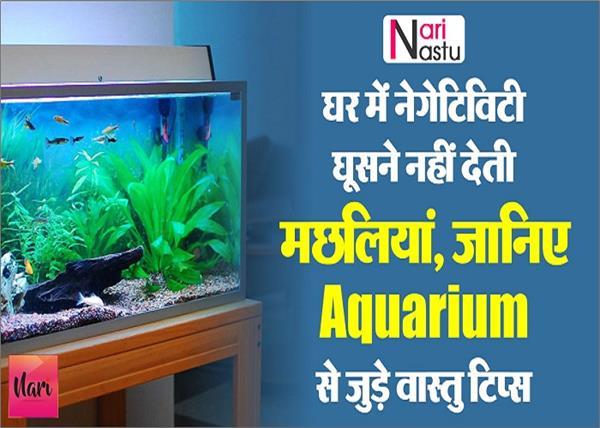 घर में नेगेटिविटी घूसने नहीं देती मछलियां, जानिए Aquarium से जुड़े वास्तु टिप्स